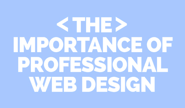 DIY Website or Professional Designer