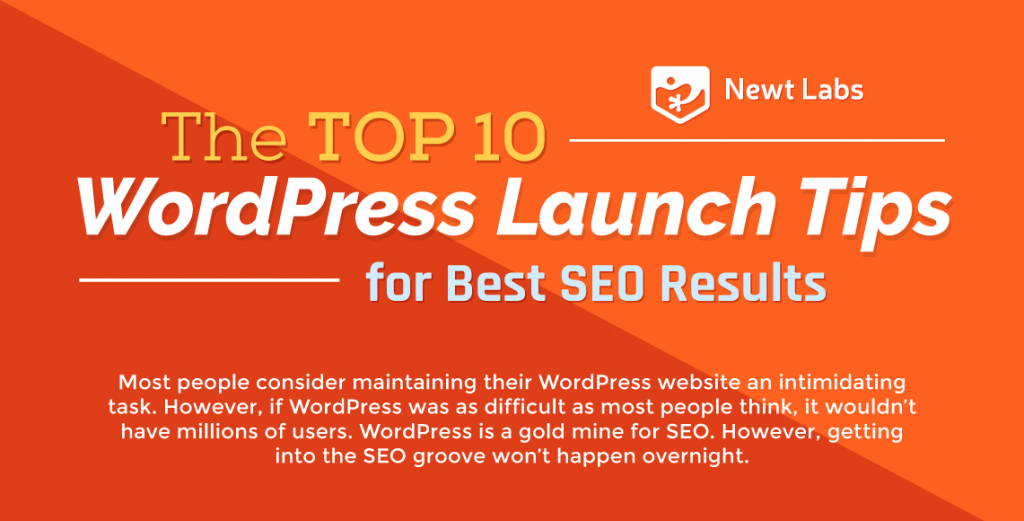 The Top 10 WordPress SEO Tips For Success