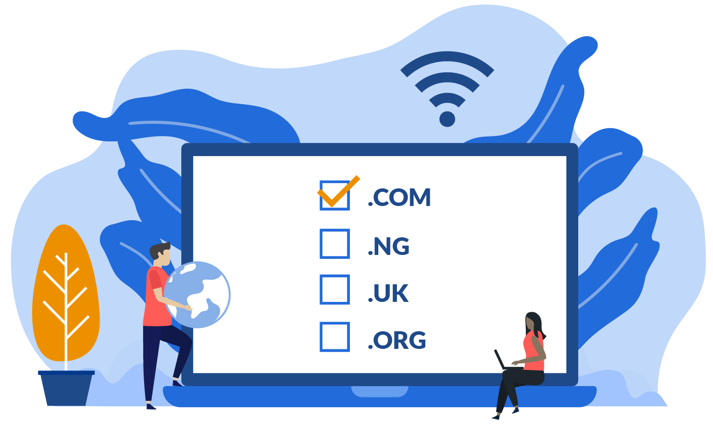 Nigeria affordable Web hosting & domain registeration